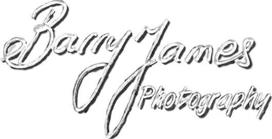 Contemporary, Creative and Candid Wedding Photography for Walsall, Rugeley, Cannock, Stafford, Staffordshire + West Midlands Weddings | Barry James Wedding Photography
